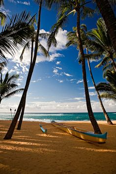 Beached Outrigger Canoe ,Maui, (Hawaii)