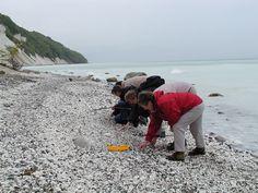#Collecting #stones at the #beach - archetypical fascination for everybody. #Mønsklint Møn #Moen #lovingislands