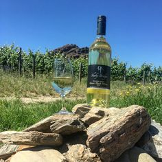 Shaky Bridge is one of the finest Central Otago wineries. Award winning Central Otago Pinot Noir NZ, and buy wine online. All day cellar door platter and wine tasting. Central Otago, Buy Wine Online, Wine Photography, Pinot Noir, Wine Tasting, White Wine, Alcoholic Drinks, Glass, Drinkware