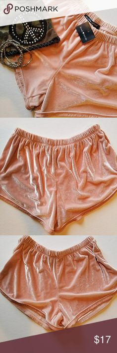 Brandy Melville Velour Track Shorts Brandy Melville Velour Track Shorts. Baby Pink, elastic waistband. New with tags. Brandy Melville Shorts