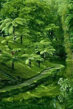Science Discover New Green Nature Trees Beautiful 33 Ideas Nature Pictures Beautiful Pictures Beautiful Places Beautiful Scenery Beautiful Landscapes Beautiful Gardens Beautiful Landscape Photography Green Nature Green Trees Beautiful World, Beautiful Gardens, Beautiful Places, Beautiful Pictures, Beautiful Scenery, Landscape Photography, Nature Photography, Nature Wallpaper, Nature Pictures