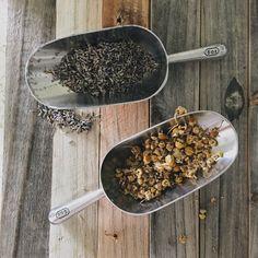 Herbal Bath Tea Recipes — Under a Tin Roof Bath Recipes, Tea Recipes, Detox Bath Soak, Spa Night, Bath Tea, Diy Beauty, Spice Things Up, How To Dry Basil, Bath And Body