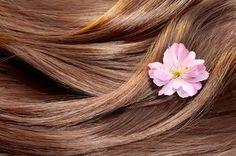 Les meilleures huiles végétales pour la beauté des cheveux !