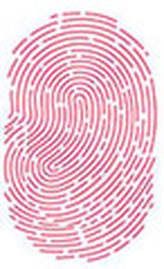 iPhone 5C vs iPhone 5S: Lector de huellas dactilares