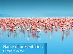 Upresentation Com Professional Powerpoint Templates Upresentation