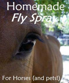 Homemade Fly Spray for Horses
