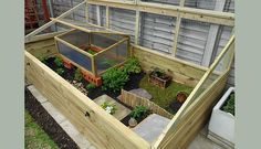 Garden Supplies - Tools & Equipment at - Customer photo of a Harrod Timber Raised Bed being used for a tortoise enclosure, the mesh top stop - Tortoise Run, Tortoise As Pets, Tortoise House, Tortoise Habitat, Tortoise Table, Baby Tortoise, Sulcata Tortoise, Turtle Enclosure, Reptile Enclosure