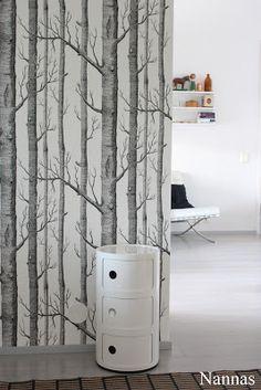 puita seinälle?
