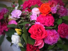 Raccontare un paese: dal mio orto: rose
