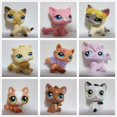 those cats are sooo cute i have the one with the sunglasses though