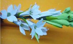 Paper flower - Tuberose / Rajnigandha