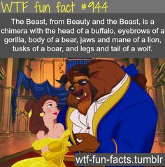 The Beast, from Beauty and the Beast, is a chimera with the head of a buffalo, eyebrows of a gorilla, body of a bear, jaws and mane of a lion, tusks of a boar, and legs and tail of a wolf.