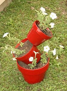 I am so going to do this and I don't have any kind of green thumb. Looks easy.