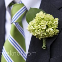 Green Hydrangea Boutonniere  but wrap in black ribbon and instead of leaf have wired ribbon