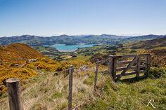 Banks Peninsula, South Island, New Zealand