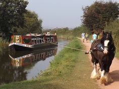 Horse drawn barge along the Great Western Canal Tiverton Canal Barge, Canal Boat, Barge Holidays, Boat Drawing, Narrowboat, Draft Horses, Horse Drawn, English Countryside, Wooden Boats