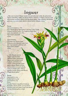 New Stark Zitate Kraut Rezepte Sch ner Garten Apotheke Pflanzen Gesundheit Natur Botanische Illustration Kr uter Magie Magic Beautiful Garden