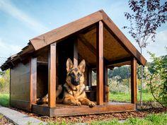 hundeh tte aus einwegpaletten bauanleitung zum selber bauen cosas para perros pinterest. Black Bedroom Furniture Sets. Home Design Ideas
