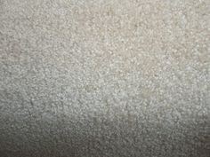Wall-to-Wall Carpeting 175820: Wall To Wall Carpet Cafe -> BUY IT NOW ONLY: $99 on eBay!