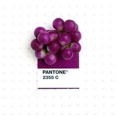 Los colores Pantone vuelven loca a mucha gente, y esta diseñadora se dedica a coger objetos reales y buscar el color exacto entre los miles que existen.