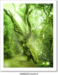 Enchanted Forest - Artwork  - Art Print from FreeArt.com