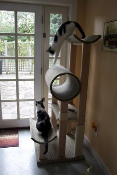 Check out this sweet, make-it-yourself cat scratching post. These cats must be in Heaven! To banish cat odors (even urine!), visit www.critterzoneusa.com.