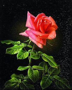 Аукционное: Grünberg, Wolfgang (1909 Köln - 2001) | Роза жёлтая, роза чайная Аромата необычайного..... Обсуждение на LiveInternet - Российский Сервис Онлайн-Дневников
