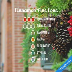 Cinnamon Pine Cone - Essential Oil Diffuser Blend