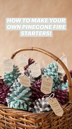 Handmade Christmas Crafts, Christmas Crafts For Adults, Christmas Gift Baskets, Christmas Gift For You, Homemade Christmas Gifts, Christmas Diy, Christmas Bedroom, Christmas Decorations, Pinecone Fire Starters