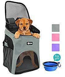Durable Modeling Sincere Hands Free Waist Pet Dog Leash For Running Walking Hiking With Adjustable Waist Pocket Bag orange
