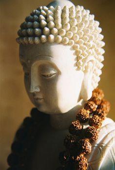 Buddha with rudraksha Gautama Buddha, Buddha Buddhism, Ganesha, Namaste, Art Buddha, Buddha Gifts, Sculpture, Serenity, Peace