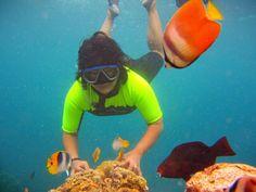 Underwater scene of Bunaken, North Sulawesi, Indonesia