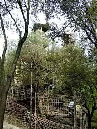 Josep Pujiula i Vila Architecture, Plants, Labyrinths, Arquitetura, Planters, Architecture Illustrations, Plant, Planting, Architecture Design
