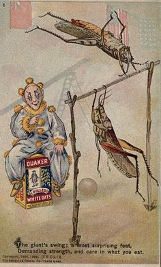 Excerpt from The Frolie Grasshopper Circus. 1898.