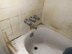 die besten 25 black mold in shower ideen auf pinterest dusche schimmelentferner schimmel in. Black Bedroom Furniture Sets. Home Design Ideas