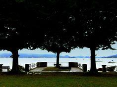 Panorama del #LagoMaggiore dal borgo di #Cerro - #LavenoMombello ©ViolaCorradi
