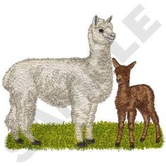 ALPACA MOM AND BABY - LLAMA - 2 EMBROIDERED HAND TOWELS by Susan