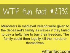 Ireland during the medieval times - WTF fun facts We should do this now, Jail doesn't work.