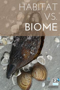 Habitat vs. Biome | Homeschool Science Corner at Elemental Blogging