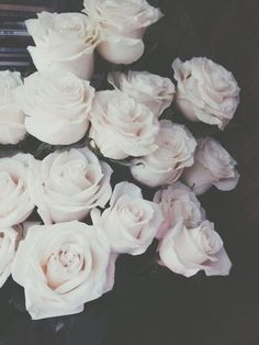 """""""White? White?!"""" Rachel shrieked a bit. """"I said red roses! Not white!"""" """"S-sorry your Majesty.."""" The royal guard stuttered a bit. """"W-We accidentally planted the white roses a-and-"""" he got cut off. """"Don't give me excuses,"""" She snaps. """"These roses better be red. Tomorrow."""" She ordered. """"But y-your highness. W-We can't just turn the roses red overnight, they will have to be-"""" """"I said they BETTER be RED, TOMORROW."""" She barked. """"Or it is OFF WITH YOUR HEAD."""" His eyes widened, """"Y-Yes your…"""