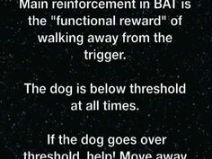 Behavior Adjustment Training (BAT) for Dog Reactivity