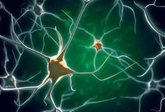 What has neuroscience ever done for us? Jonathan Roiser (winner of the Society's Spearman Medal 2013) considers the case of mental health.