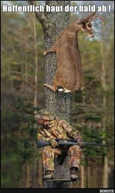 Create and share funny deer hunting graphics and comments with friends. Funny Animal Pictures, Funny Images, Funny Photos, Funny Animals, Cute Animals, Hilarious Pictures, Smart Animals, Funniest Pictures, Deer Hunting Humor