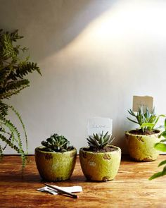 #Make It #Happen: #Flower #Pots, #Four #Ways on the #AnthroBlog