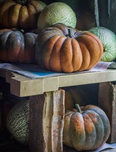 Food Places, Places To Eat, Pumpkin Vegetable, Pumpkins, Great Recipes, Vegetables, Halloween, Vegetable Recipes, Pumpkin
