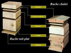 ruche dadant 10 cadres bienen imkern beekeeping and bee keeping
