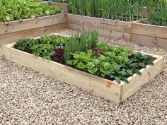 Premier Raised Beds 7in high In Various Sizes
