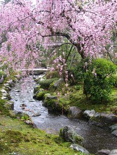 Jardín Kenrokuen en Kanazawa, Japón