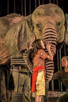 Running Wild :: Open Air Theatre More