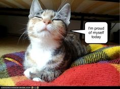 """I'm proud of myself today!""     pinned by www.affordablecomp.net"
